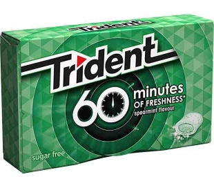 CHICLES 60 MINUTOS HIERBABUENA TRIDENT 20 GRS.