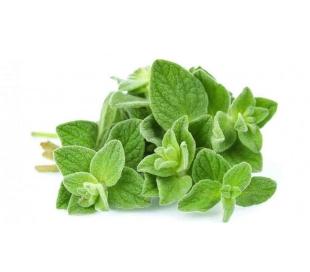 fruteria-oregano-50-grs