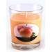 vela-vaso-perf-tropical-ambientair-1-un