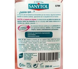jabon-de-manos-cocina-dosificador-sanytol-250-ml