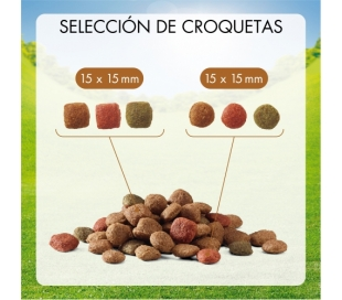 comida-perros-adulto-aves-verd-friskies-10-kg