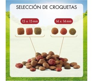 comida-perro-adulto-carne-friskies-3-kg