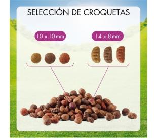 comida-perros-menu-buey-friskbuey-15-kg
