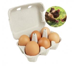 huevos-camperos-6-un
