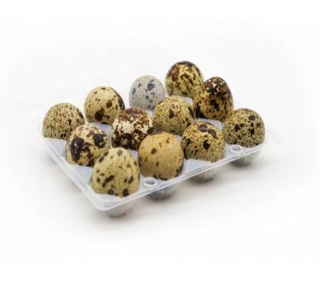 huevos-codorniz-12-un