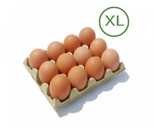 huevos-xl-12-un